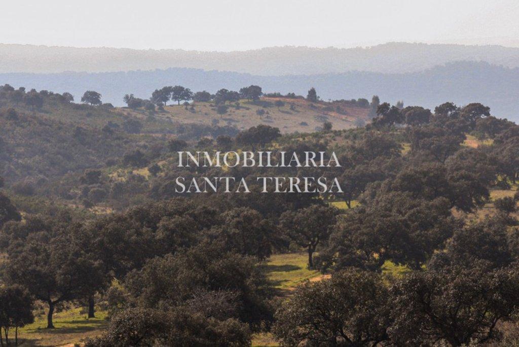 Casas de campo y fincas - Venta - Inmob. Santa Teresa