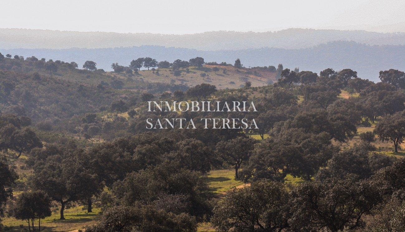 Finca en el ronquillo inmobiliaria santa teresa for Casas de campo en alquiler baratas en sevilla